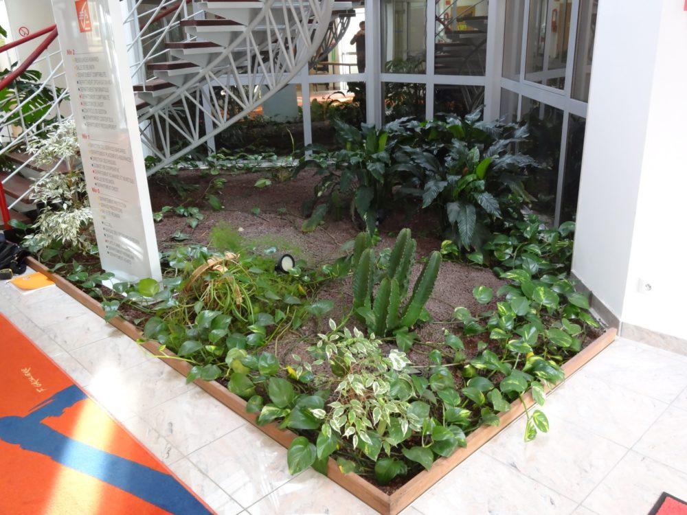 Services aux professionnels rebeyrol cr ateur de jardins for Entreprise amenagement jardin