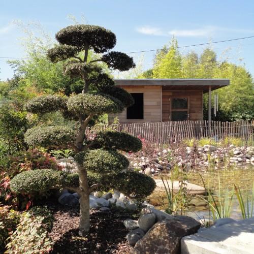 entretien, jardin, taille, massif, taille végétaux, entretien jardin limoges, entretien limoges, taille limoges, taille végétaux limoges, rebeyrol