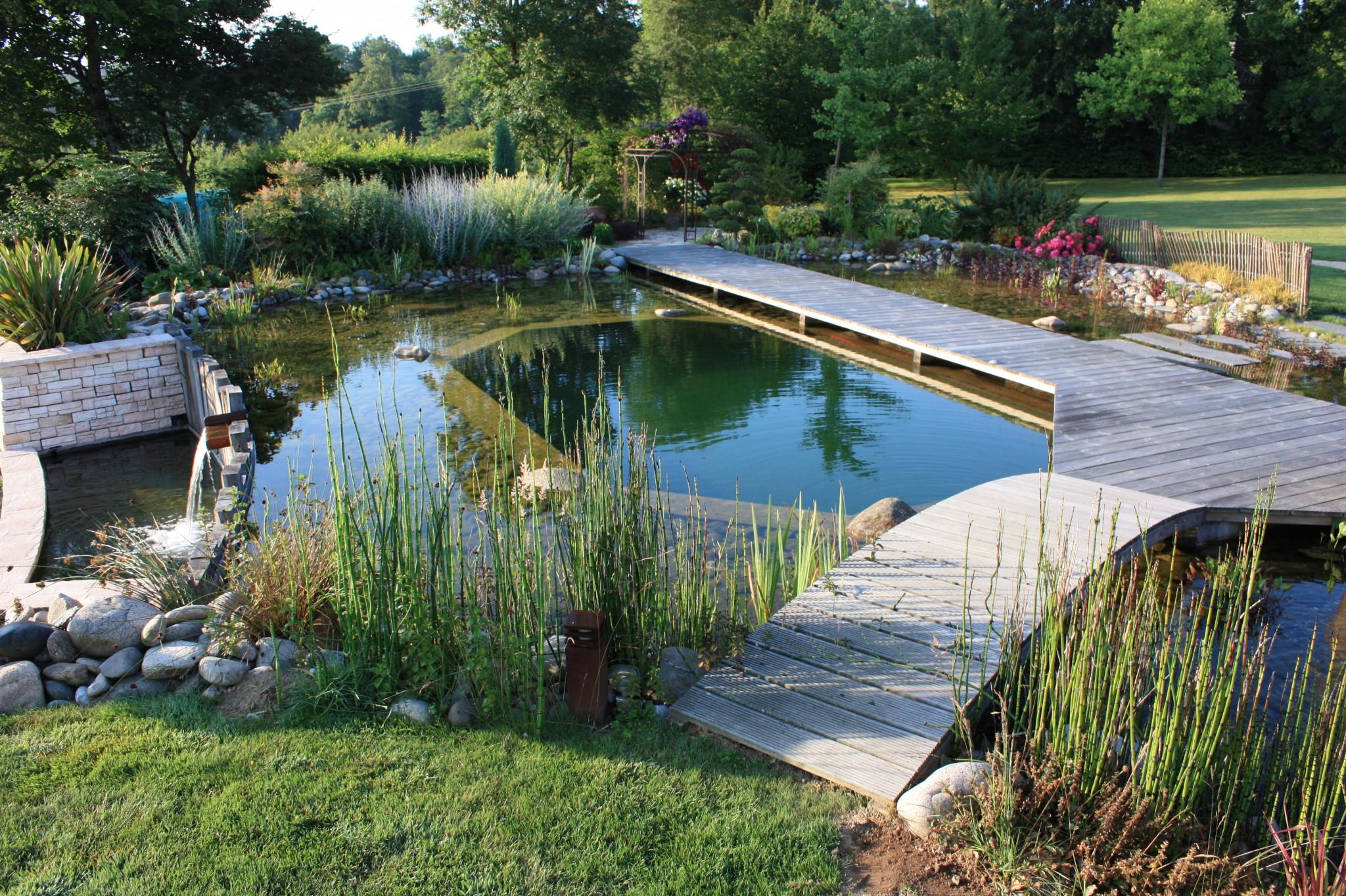 Passerelles bois sur bassin de baignade biologique Limoges - Passerelle bois, bassin de baignade naturel