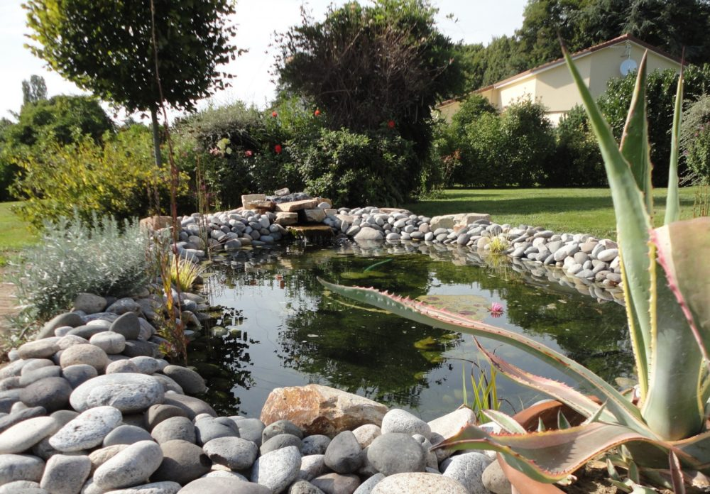 Bassin galets - Bassin naturel en galets