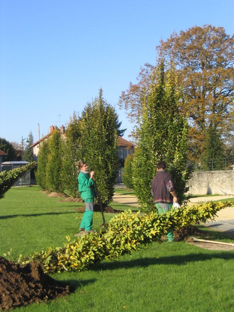 Services aux professionnels rebeyrol cr ateur de jardins for Entretien jardin uzerche