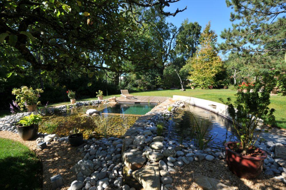 Piscine biologique au coeur de la ville rebeyrol for Amenagement jardin limoges
