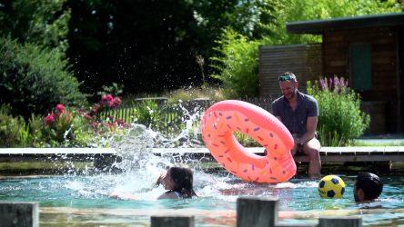 rebeyrol, rebeyrol créateur de jardins, limoges, paysagiste limoges, aménagement de jardin klimoges, bassin naturel limoges, bassin biologique limoges, piscine naturelle limoges, piscine biologique limoges,