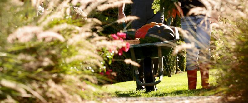 rebeyrol, rebeyrol créateur de jardins, aménagement de jardin, paysagiste, paysagiste limoges, paysagiste limoges