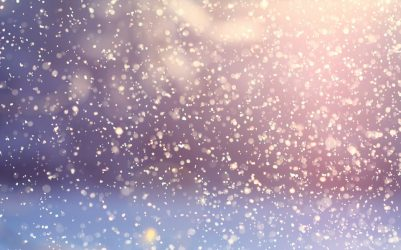 Le bien-être est dans le jardin : l'hiver